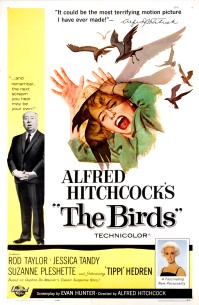 """The Academy of Motion Picture Arts and Sciences will host a month-long series of screenings of classic horror films with """"Universal's Legacy of Horror"""" in October. The series is part of the studio's year-long 100th anniversary celebration engaging Universal's fans and all movie lovers in the art of moviemaking. Pictured: THE BIRDS, 1963."""