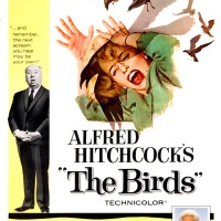 הציפורים